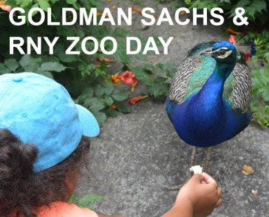Watch our visit to the zoo!